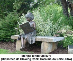 Menina lendo um livro - Biblioteca de Blowing Rock, Carolina do Norte, EUA